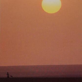 Sensual sunset ❤️🍊  @terrejournal  #sunset #sunsetlovers #soleilcouchant #nostra #nostracosmetics #cosmetiquenaturelle #madeinfrance #mediterraneanlife #marseille #cantona #naturesauvage #suddelafrance #lifestyle #photography #photooftheday #skincare #skincareroutine #senteursdusud